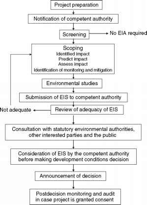 Eia Project Phases