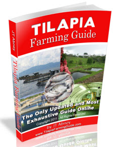 Fish Farming Guide