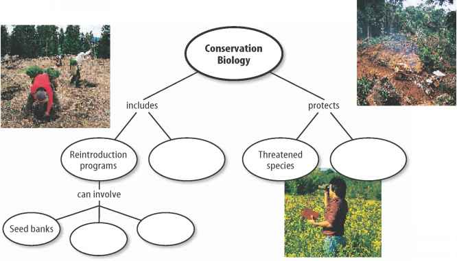 Methods Conservation Biodiversity
