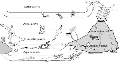 Ecological Dispersal Species