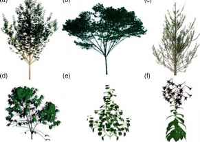 Plant Growth Simulation Software